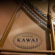 KAWAI-GL-50-M-PEP-Kuyruklu-Piyan_71404_3