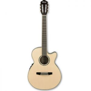 Ibanez-AEG10NII-NT-Elektro-Klasik-Gitar